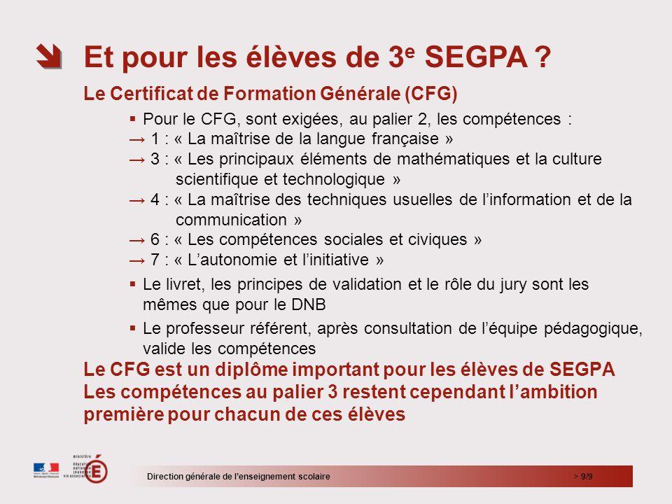> 9/9 Le Certificat de Formation Générale (CFG) Pour le CFG, sont exigées, au palier 2, les compétences : 1 : « La maîtrise de la langue française » 3