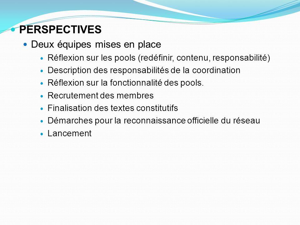 PERSPECTIVES Deux équipes mises en place Réflexion sur les pools (redéfinir, contenu, responsabilité) Description des responsabilités de la coordination Réflexion sur la fonctionnalité des pools.