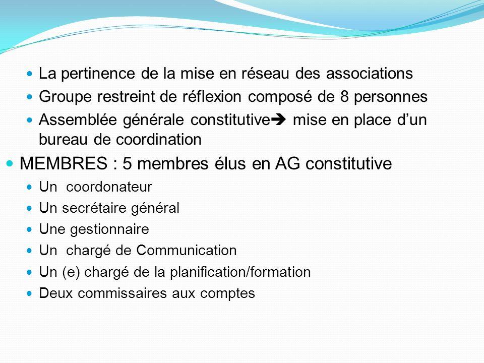 La pertinence de la mise en réseau des associations Groupe restreint de réflexion composé de 8 personnes Assemblée générale constitutive mise en place