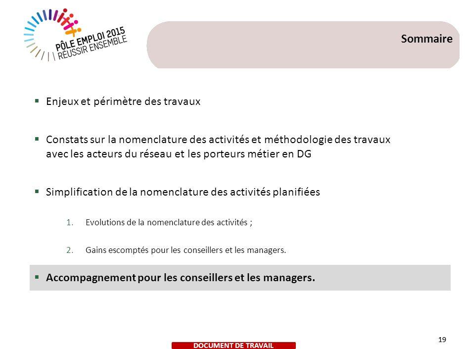 DOCUMENT DE TRAVAIL 19 Sommaire Enjeux et périmètre des travaux Constats sur la nomenclature des activités et méthodologie des travaux avec les acteur