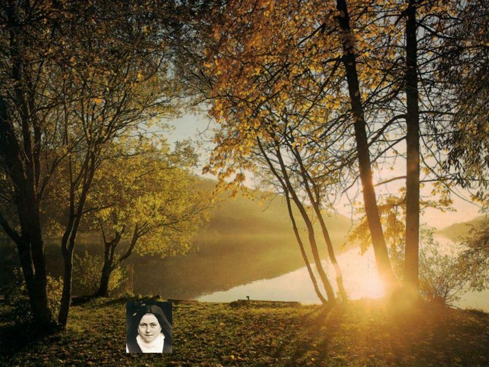 Prière de Ste-Thérèse Découvrez les et ressourcez-vous faites avancer les diapositives à votre rythme