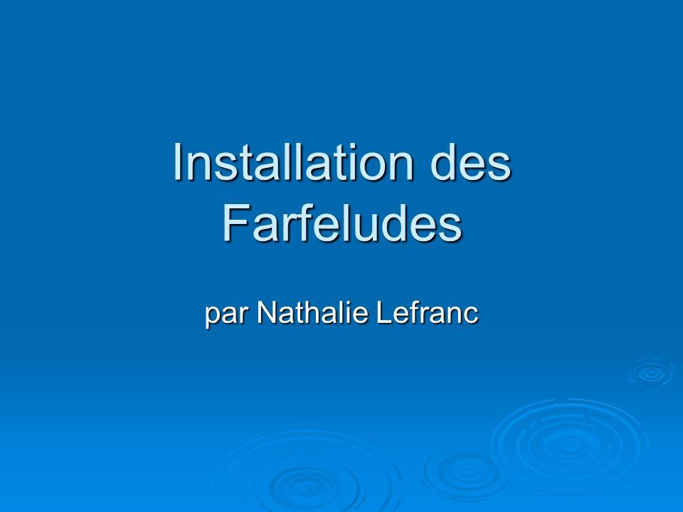 Installation des Farfeludes par Nathalie Lefranc