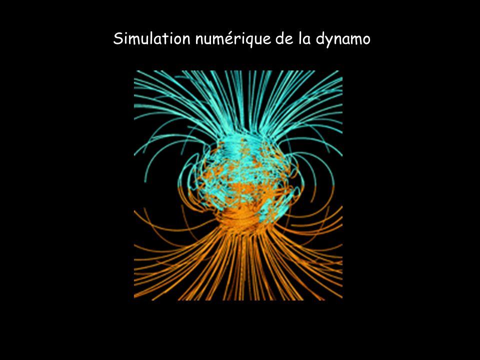 Simulation numérique de la dynamo