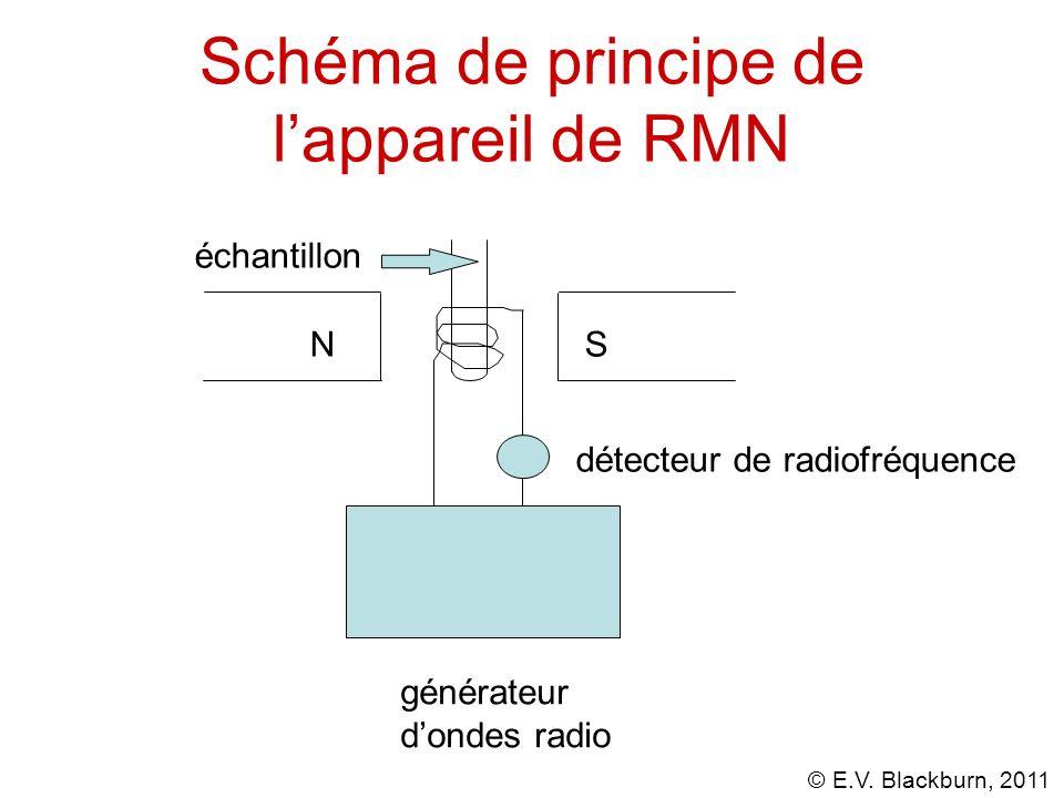 © E.V. Blackburn, 2011 Schéma de principe de lappareil de RMN NS échantillon générateur dondes radio détecteur de radiofréquence