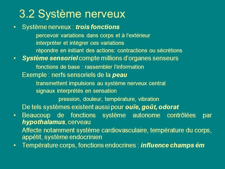 Système nerveux : trois fonctions percevoir variations dans corps et à lextérieur interpréter et intégrer ces variations répondre en initiant des acti