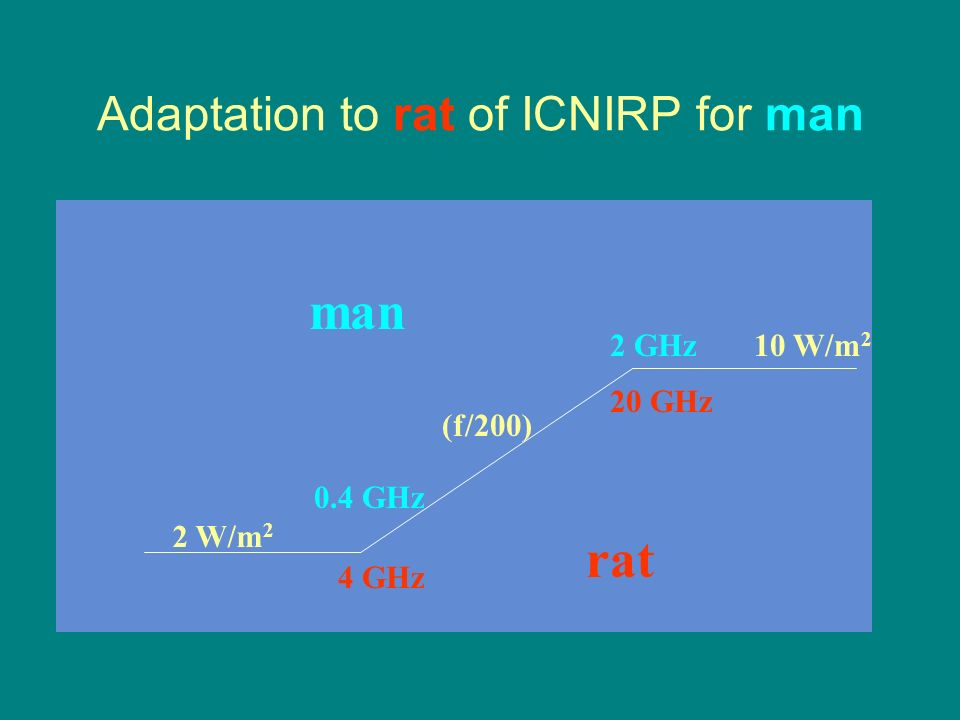 Adaptation to rat of ICNIRP for man man rat 0.4 GHz 4 GHz 2 GHz 20 GHz (f/200) 2 W/m 2 10 W/m 2