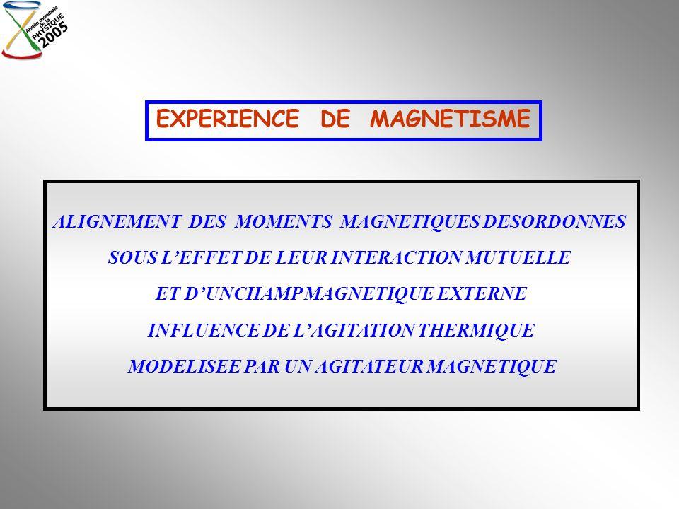 ALIGNEMENT DES MOMENTS MAGNETIQUES DESORDONNES SOUS LEFFET DE LEUR INTERACTION MUTUELLE ET DUNCHAMP MAGNETIQUE EXTERNE INFLUENCE DE LAGITATION THERMIQ