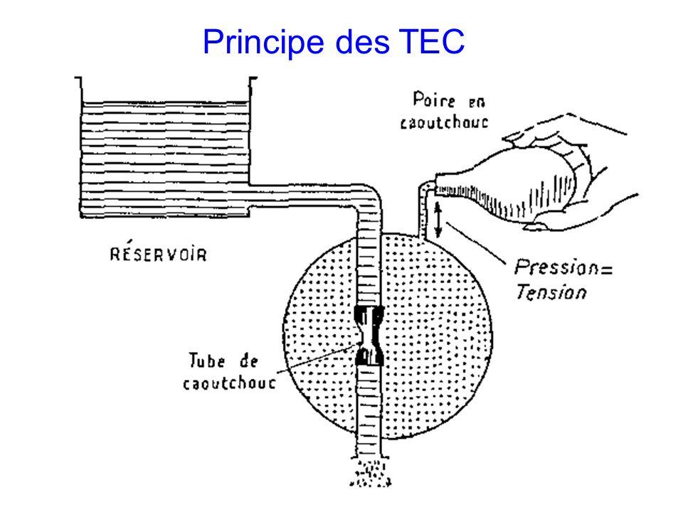 Principe des TEC
