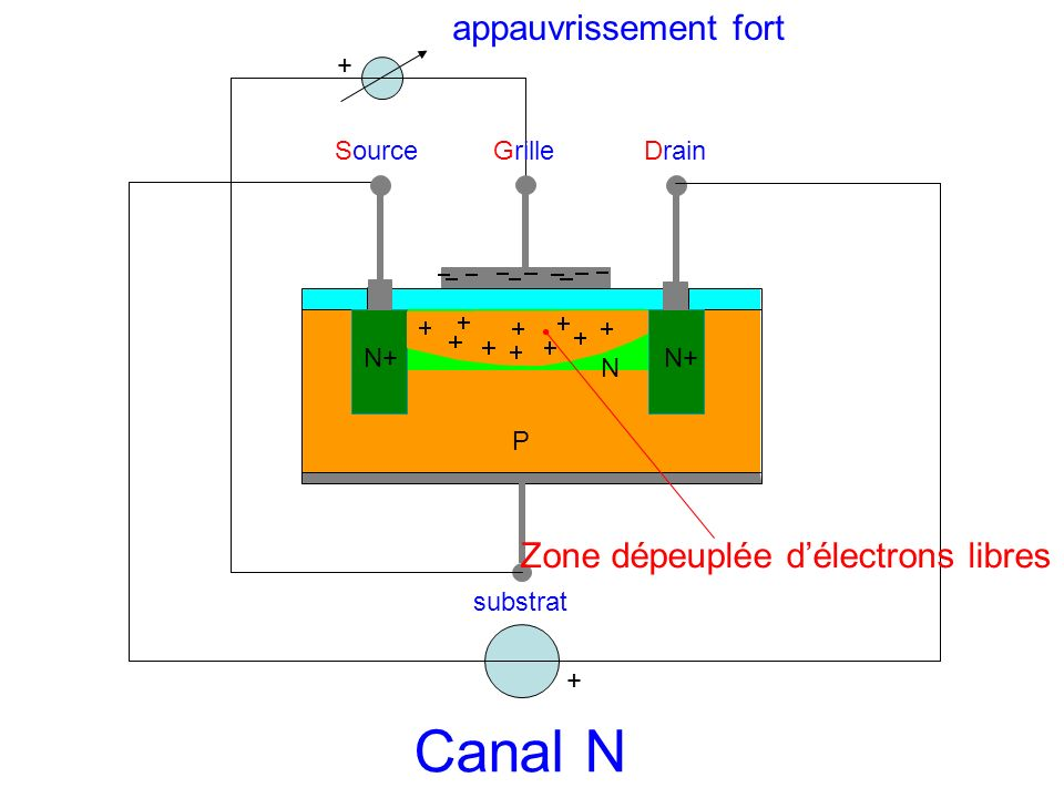 SourceGrilleDrain substrat N P N+ + Zone dépeuplée délectrons libres Canal N + appauvrissement fort