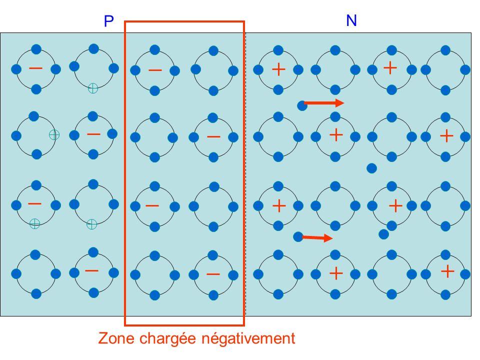 P N Zone chargée négativement