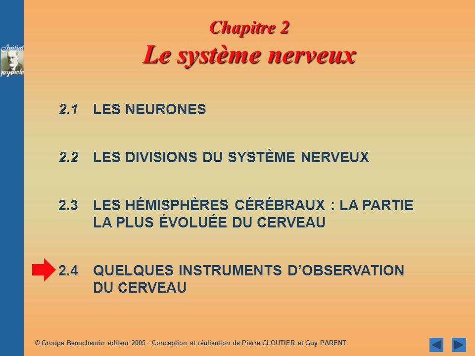 © Groupe Beauchemin éditeur 2005 - Conception et réalisation de Pierre CLOUTIER et Guy PARENT 2.1 LES NEURONES 2.2 LES DIVISIONS DU SYSTÈME NERVEUX 2.3LES HÉMISPHÈRES CÉRÉBRAUX : LA PARTIE LA PLUS ÉVOLUÉE DU CERVEAU 2.4QUELQUES INSTRUMENTS DOBSERVATION DU CERVEAU Chapitre 2 Le système nerveux