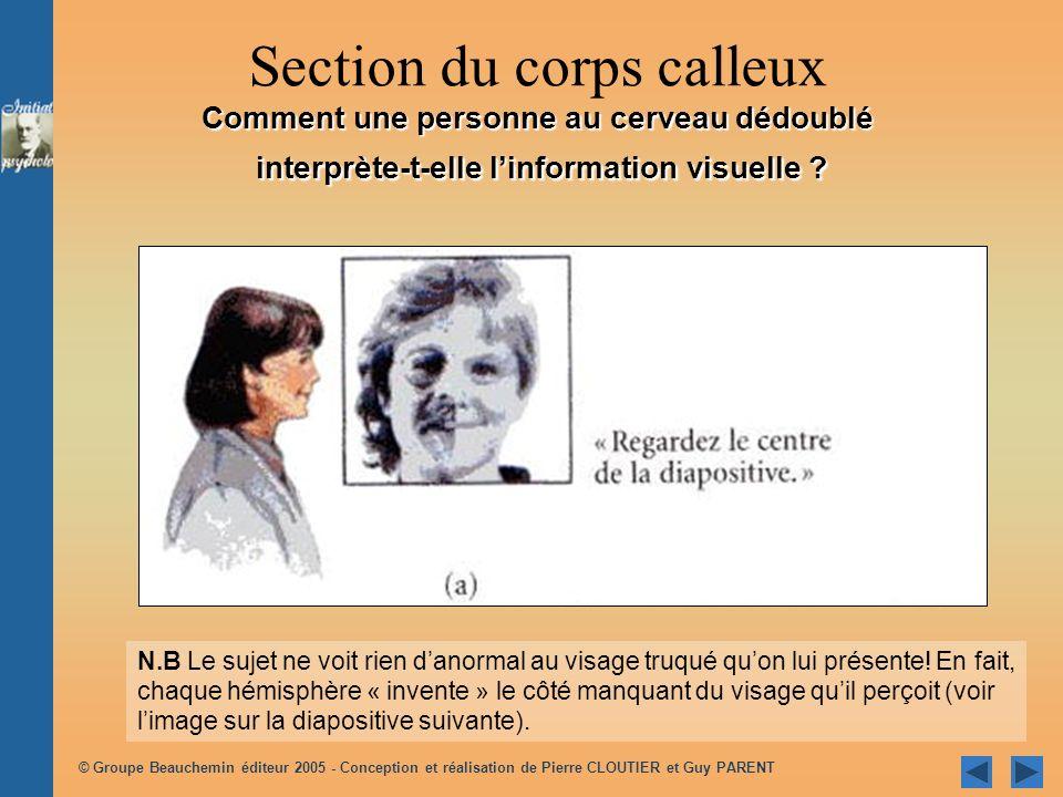 © Groupe Beauchemin éditeur 2005 - Conception et réalisation de Pierre CLOUTIER et Guy PARENT #1 On demande au sujet de pointer ce quil a vu avec sa main gauche.