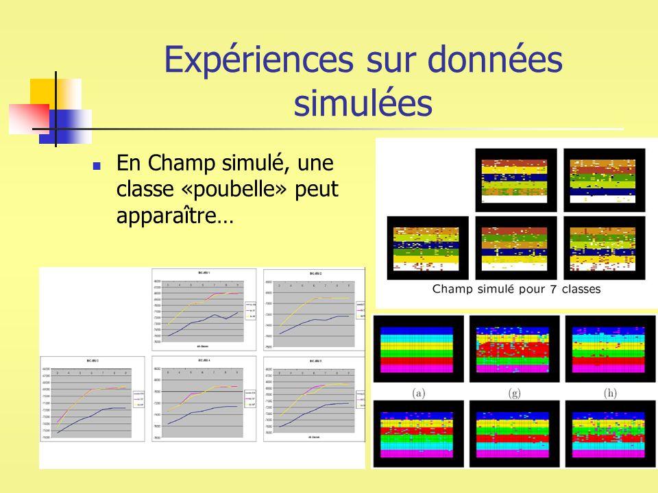 Expériences sur données simulées En Champ simulé, une classe «poubelle» peut apparaître…