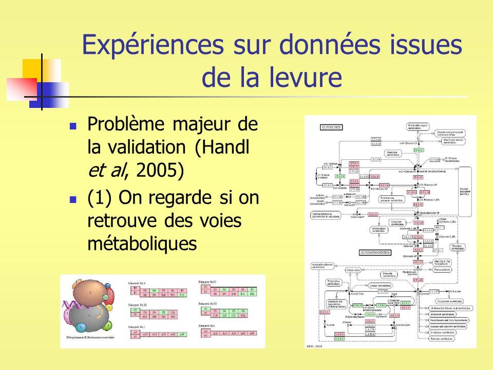 Expériences sur données issues de la levure Problème majeur de la validation (Handl et al, 2005) (1) On regarde si on retrouve des voies métaboliques