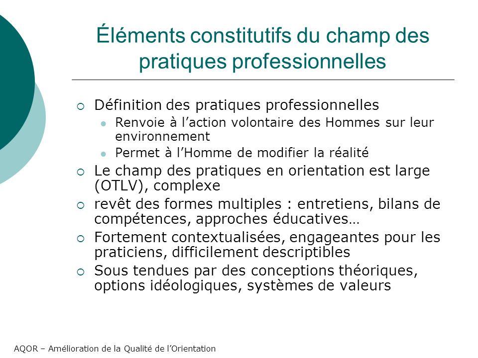 AQOR – Amélioration de la Qualité de lOrientation Éléments constitutifs du champ des pratiques professionnelles Définition des pratiques professionnel