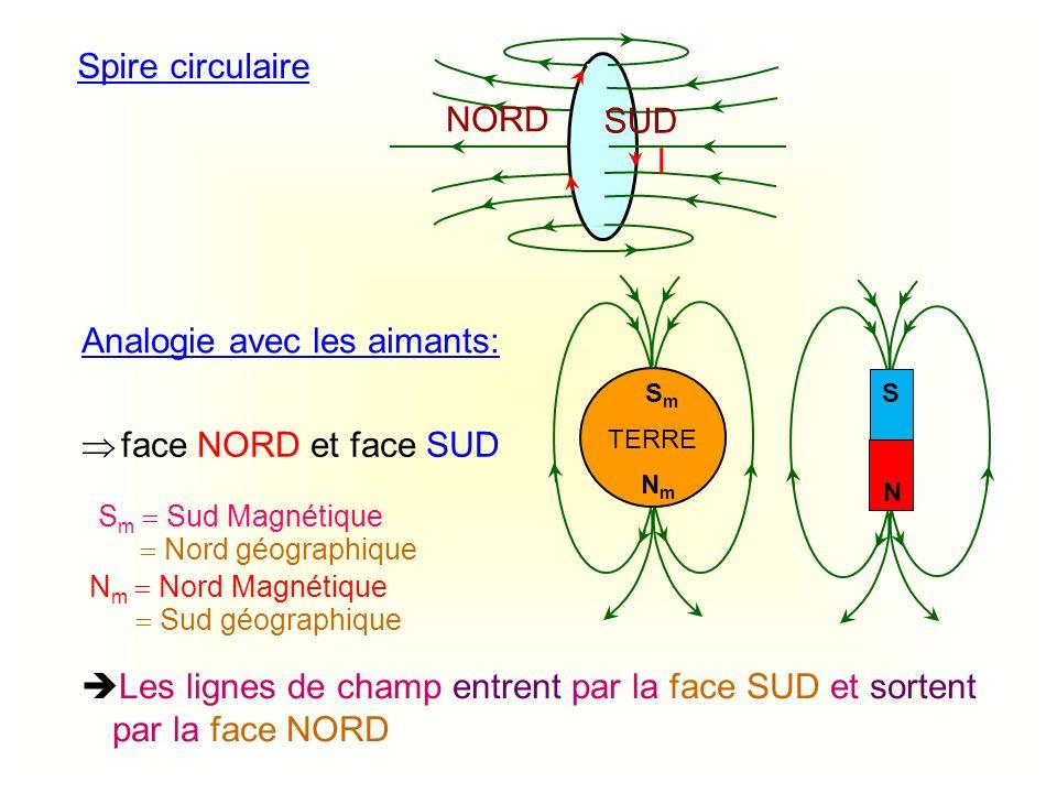 Spire circulaire I Analogie avec les aimants: Les lignes de champ entrent par la face SUD et sortent par la face NORD face NORD et face SUD SUD NORD T