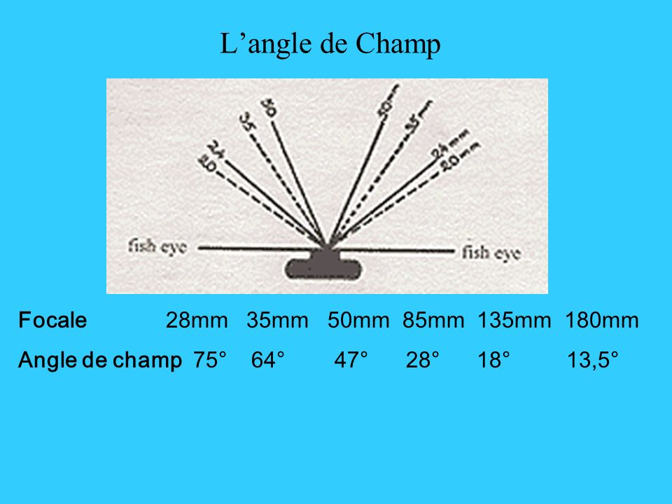 Langle de Champ Focale 28mm 35mm 50mm 85mm 135mm 180mm Angle de champ 75° 64° 47° 28° 18° 13,5°