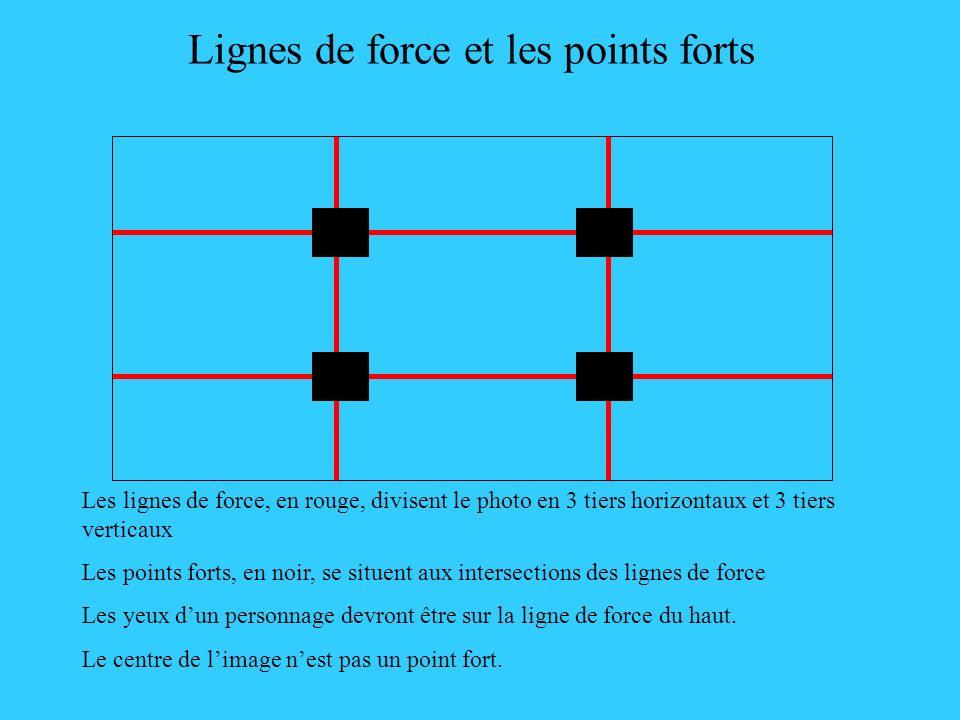 Lignes de force et les points forts Les lignes de force, en rouge, divisent le photo en 3 tiers horizontaux et 3 tiers verticaux Les points forts, en