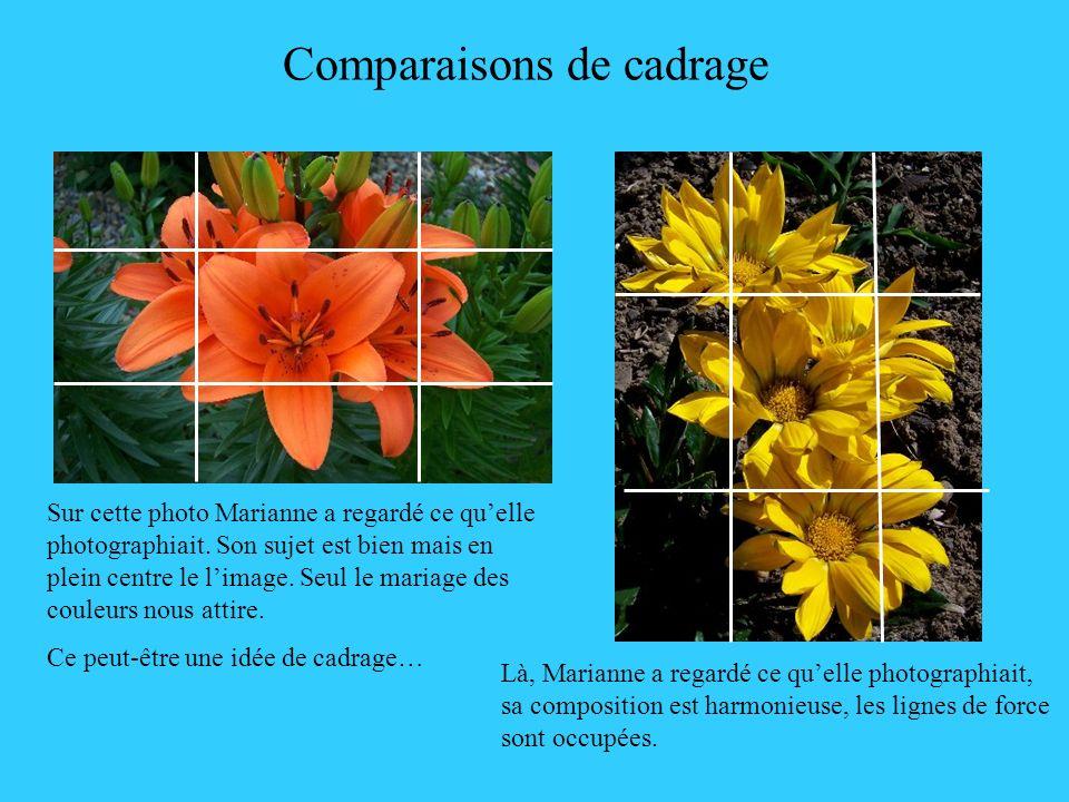 Comparaisons de cadrage Sur cette photo Marianne a regardé ce quelle photographiait. Son sujet est bien mais en plein centre le limage. Seul le mariag