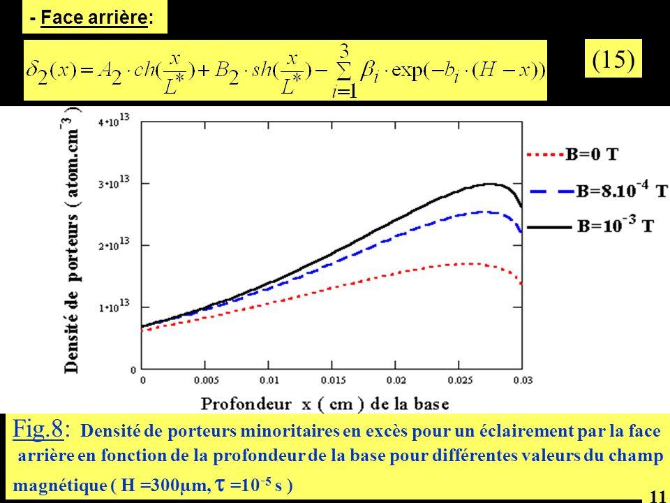 (15) Fig.8: Densité de porteurs minoritaires en excès pour un éclairement par la face arrière en fonction de la profondeur de la base pour différentes