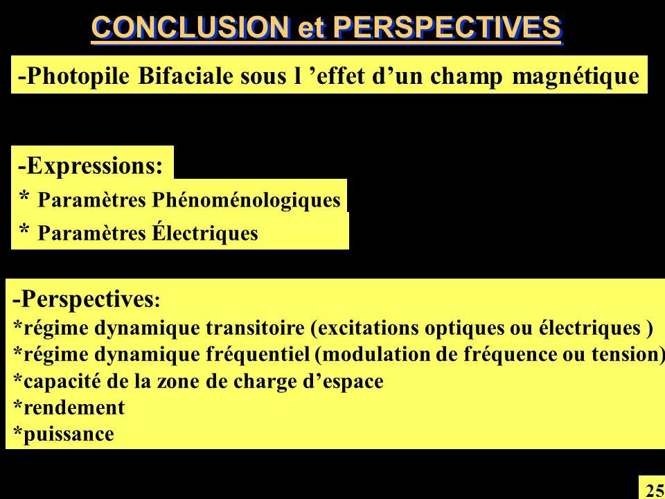 CONCLUSION et PERSPECTIVES -Photopile Bifaciale sous l effet dun champ magnétique -Perspectives : *régime dynamique transitoire (excitations optiques