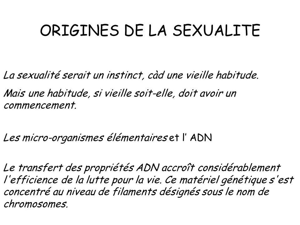 ORIGINES DE LA SEXUALITE La sexualité serait un instinct, càd une vieille habitude. Mais une habitude, si vieille soit-elle, doit avoir un commencemen