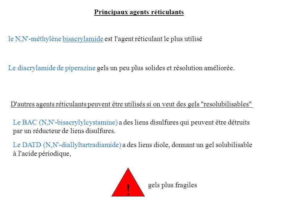 Principaux agents réticulants le N,N'-méthylène bisacrylamide est l'agent réticulant le plus utilisé Le diacrylamide de piperazine gels un peu plus so