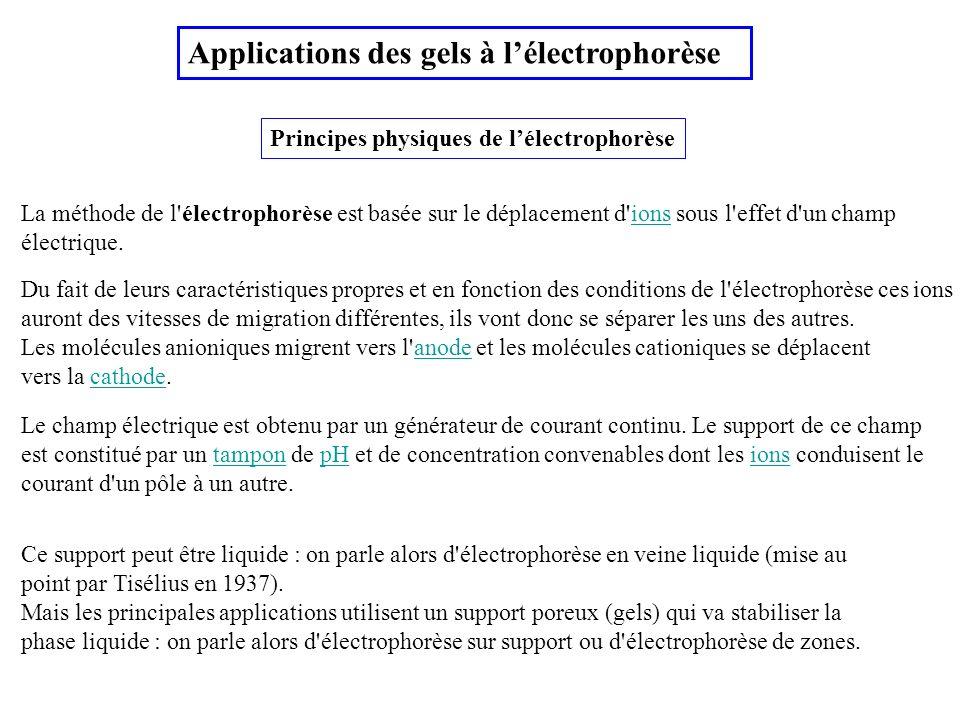 Principes physiques de lélectrophorèse Applications des gels à lélectrophorèse Du fait de leurs caractéristiques propres et en fonction des conditions
