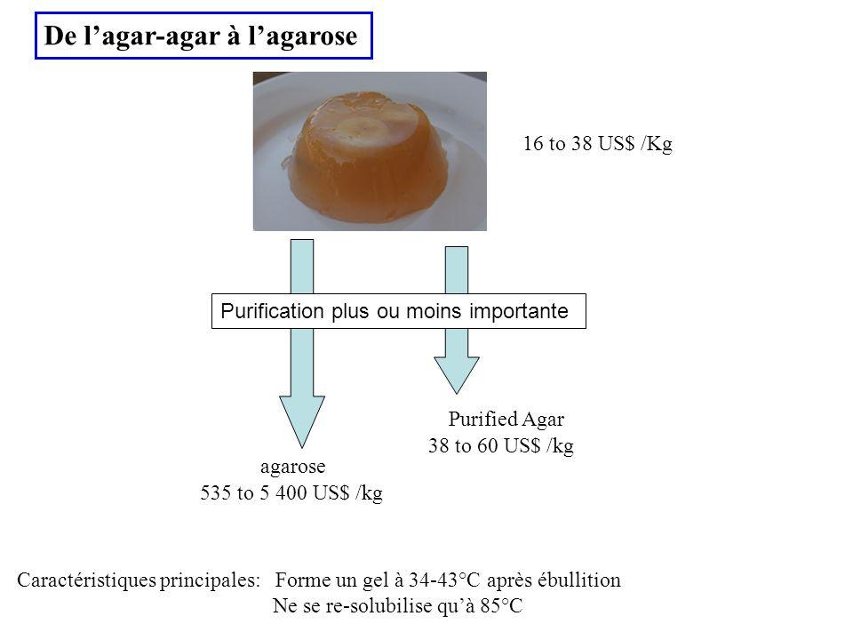 De lagar-agar à lagarose 16 to 38 US$ /Kg Purified Agar 38 to 60 US$ /kg 535 to 5 400 US$ /kg agarose Purification plus ou moins importante Caractéris
