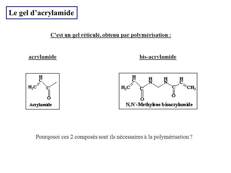 Le gel dacrylamide C'est un gel réticulé, obtenu par polymérisation : acrylamidebis-acrylamide Pourqouoi ces 2 composés sont ils nécessaires à la poly