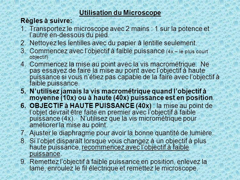 Utilisation du Microscope Règles à suivre: 1.Transportez le microscope avec 2 mains : 1 sur la potence et lautre en-dessous du pied. 2.Nettoyez les le