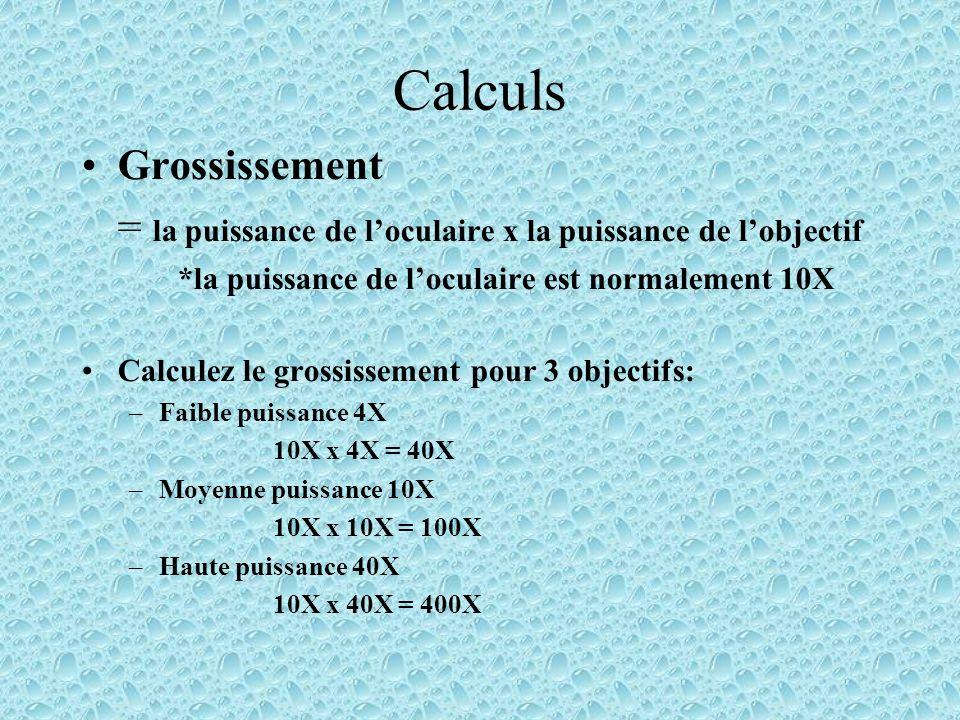 Calculs Grossissement = la puissance de loculaire x la puissance de lobjectif *la puissance de loculaire est normalement 10X Calculez le grossissement