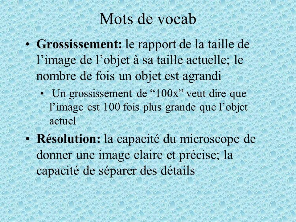 Le microscope optique (composé) Très commun Comprend plusieurs lentilles Requiert une source de lumière La lumière passe à travers du spécimen et puis à travers les lentilles.