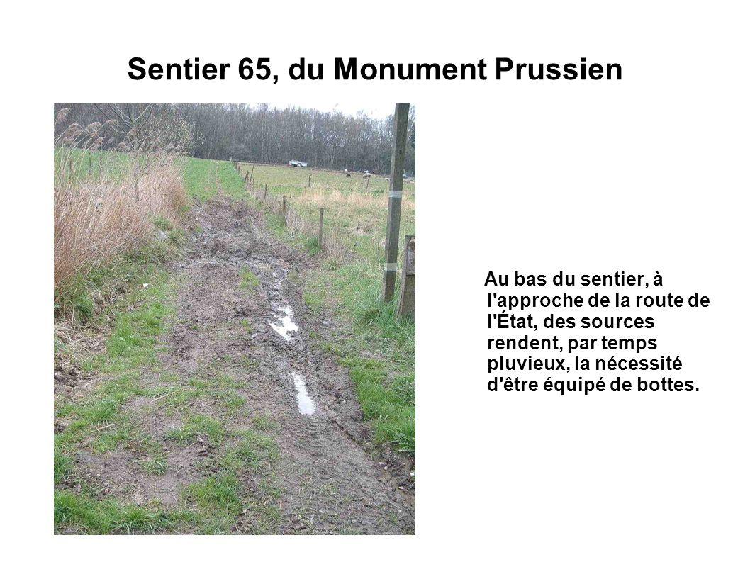 Sentier 65, du Monument Prussien Au bas du sentier, à l'approche de la route de l'État, des sources rendent, par temps pluvieux, la nécessité d'être é