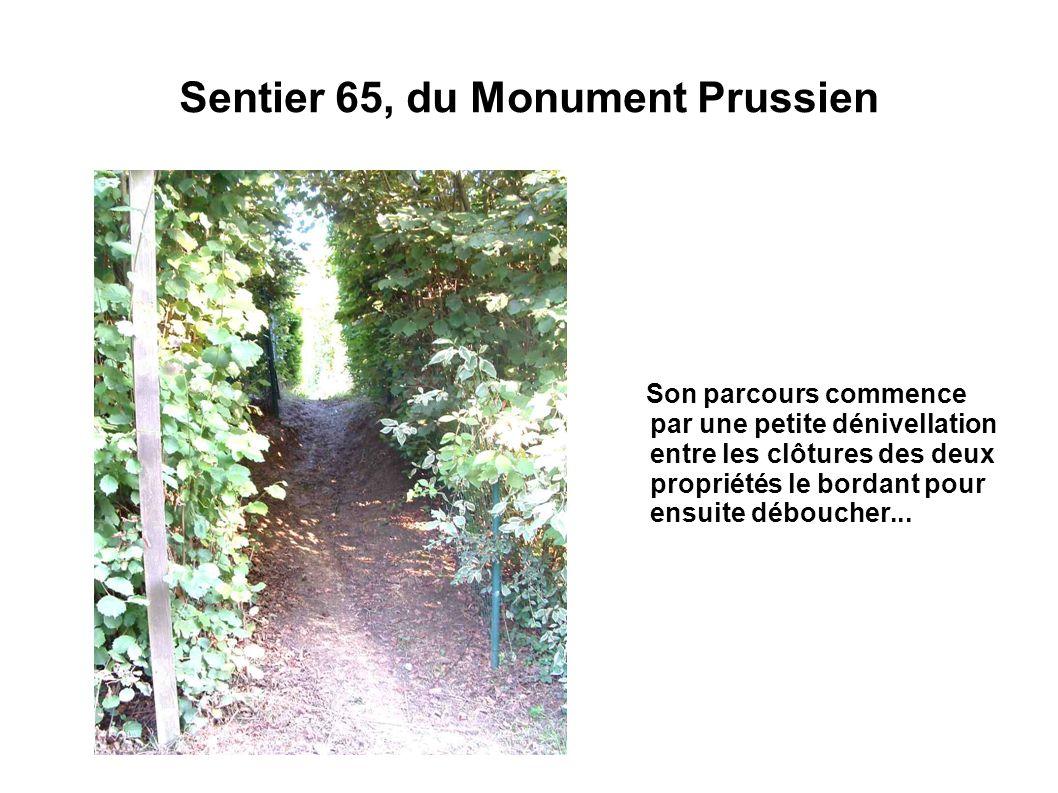 Sentier 65, du Monument Prussien Son parcours commence par une petite dénivellation entre les clôtures des deux propriétés le bordant pour ensuite déb