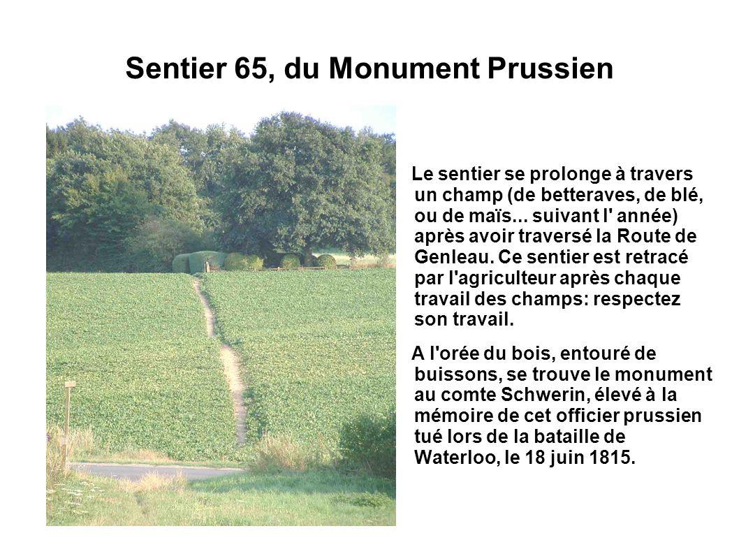 Sentier 65, du Monument Prussien Le sentier se prolonge à travers un champ (de betteraves, de blé, ou de maïs... suivant l' année) après avoir travers