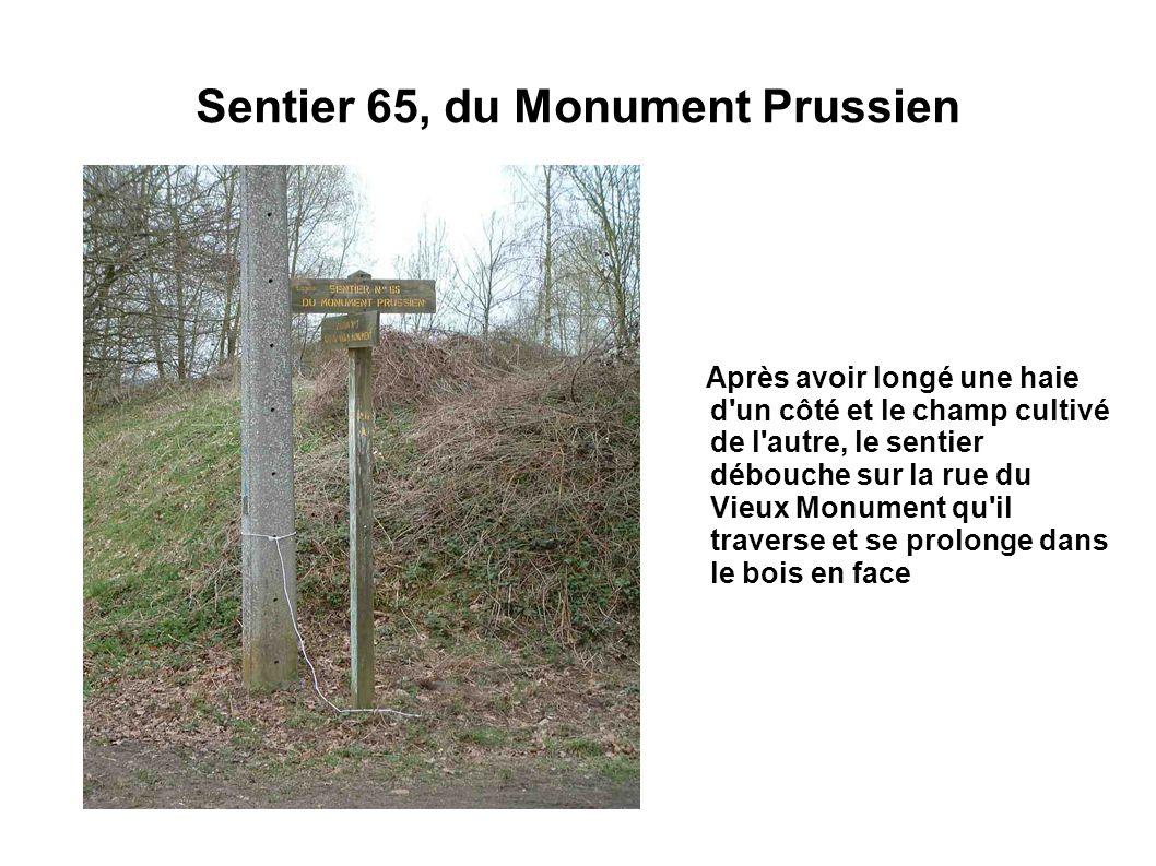 Sentier 65, du Monument Prussien Après avoir longé une haie d'un côté et le champ cultivé de l'autre, le sentier débouche sur la rue du Vieux Monument