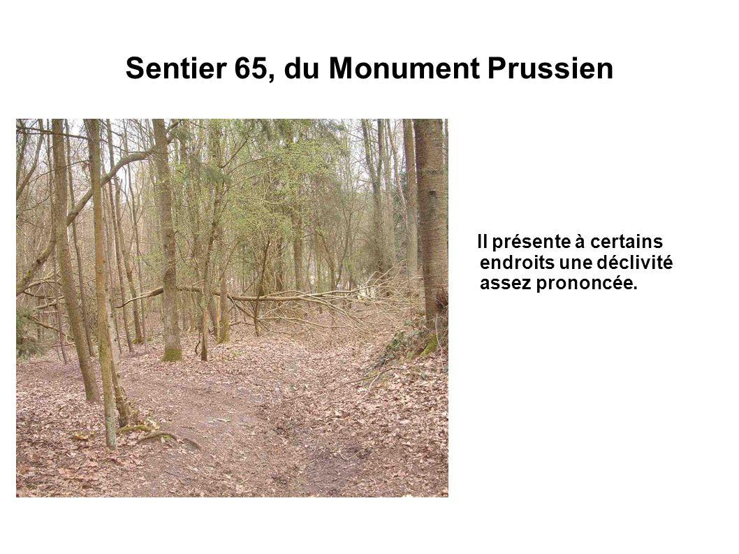 Sentier 65, du Monument Prussien Il présente à certains endroits une déclivité assez prononcée.