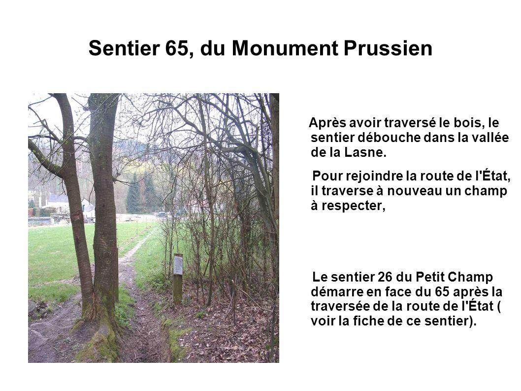 Sentier 65, du Monument Prussien Après avoir traversé le bois, le sentier débouche dans la vallée de la Lasne. Pour rejoindre la route de l'État, il t
