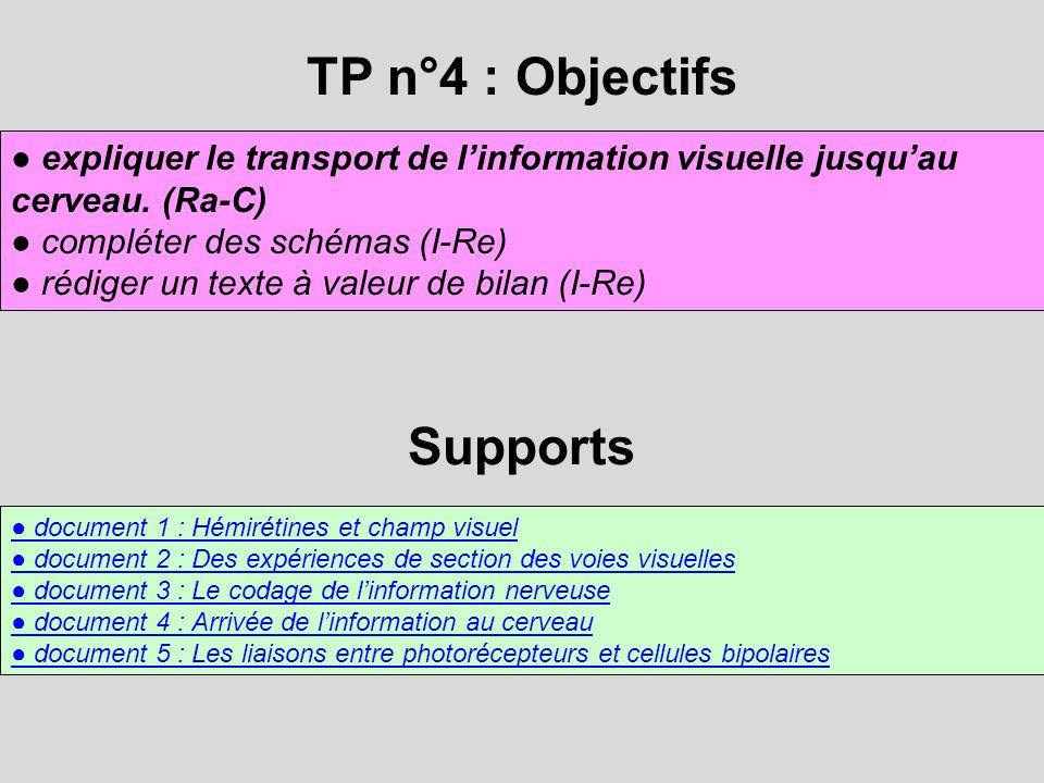TP n°4 : Objectifs expliquer le transport de linformation visuelle jusquau cerveau. (Ra-C) compléter des schémas (I-Re) rédiger un texte à valeur de b