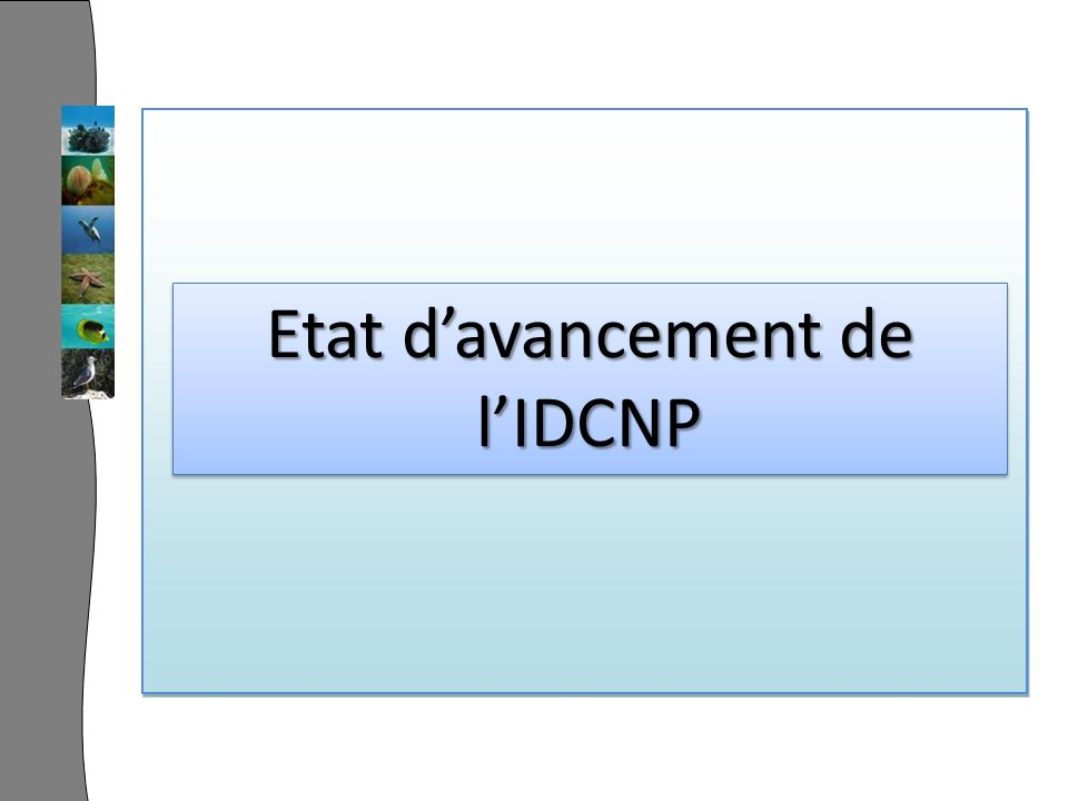 Etat davancement de lIDCNP