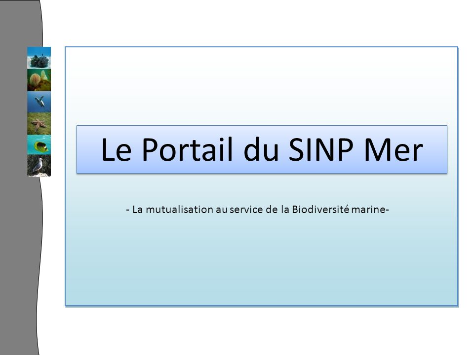 Le Portail du SINP Mer - La mutualisation au service de la Biodiversité marine-