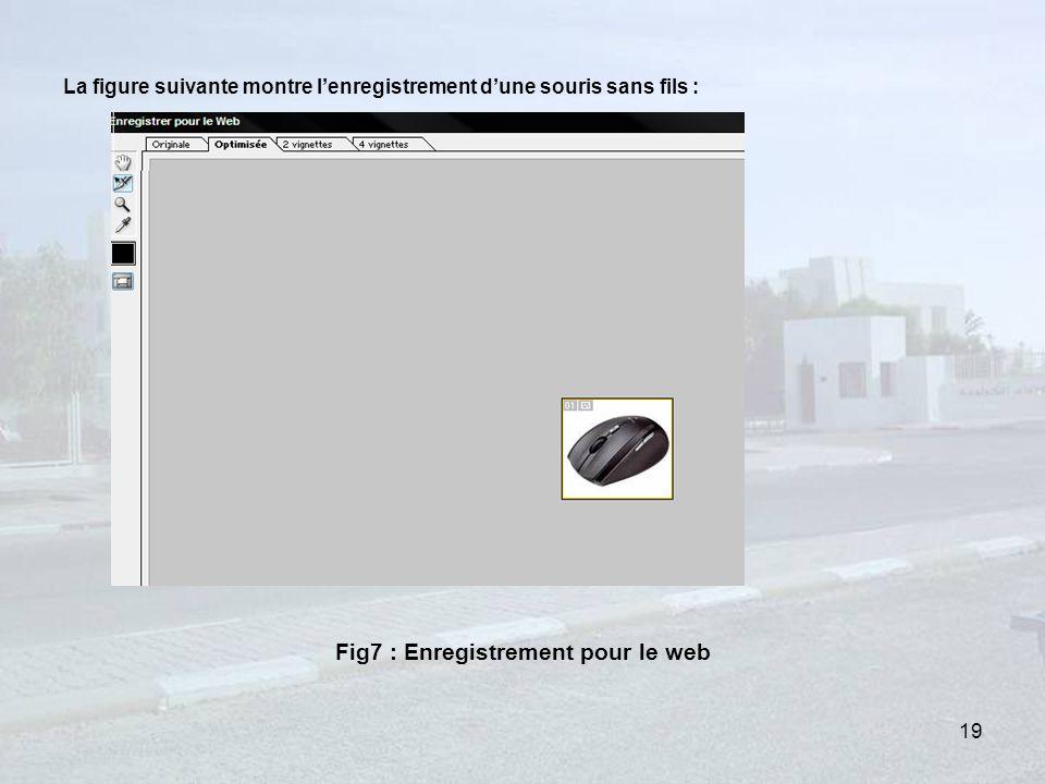 La figure suivante montre lenregistrement dune souris sans fils : Fig7 : Enregistrement pour le web 19