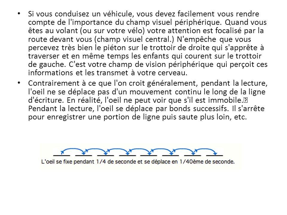 Si vous conduisez un véhicule, vous devez facilement vous rendre compte de l'importance du champ visuel périphérique. Quand vous êtes au volant (ou su