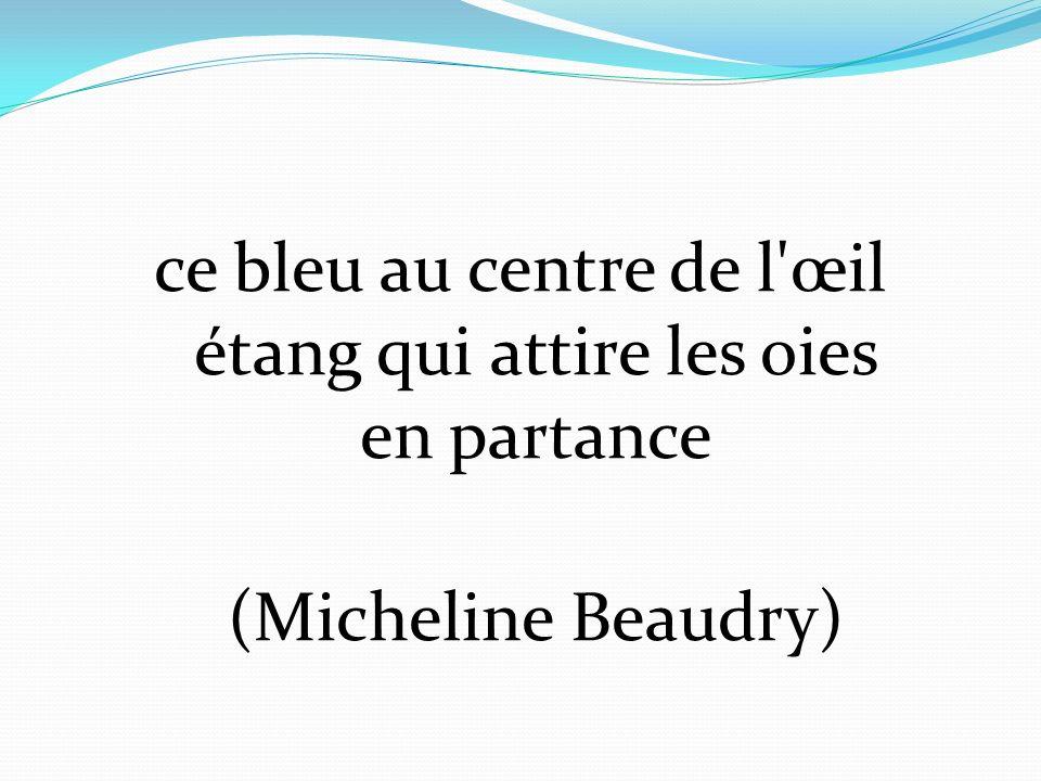 ce bleu au centre de l'œil étang qui attire les oies en partance (Micheline Beaudry)