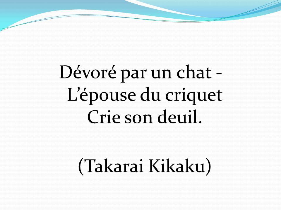 Dévoré par un chat - Lépouse du criquet Crie son deuil. (Takarai Kikaku)