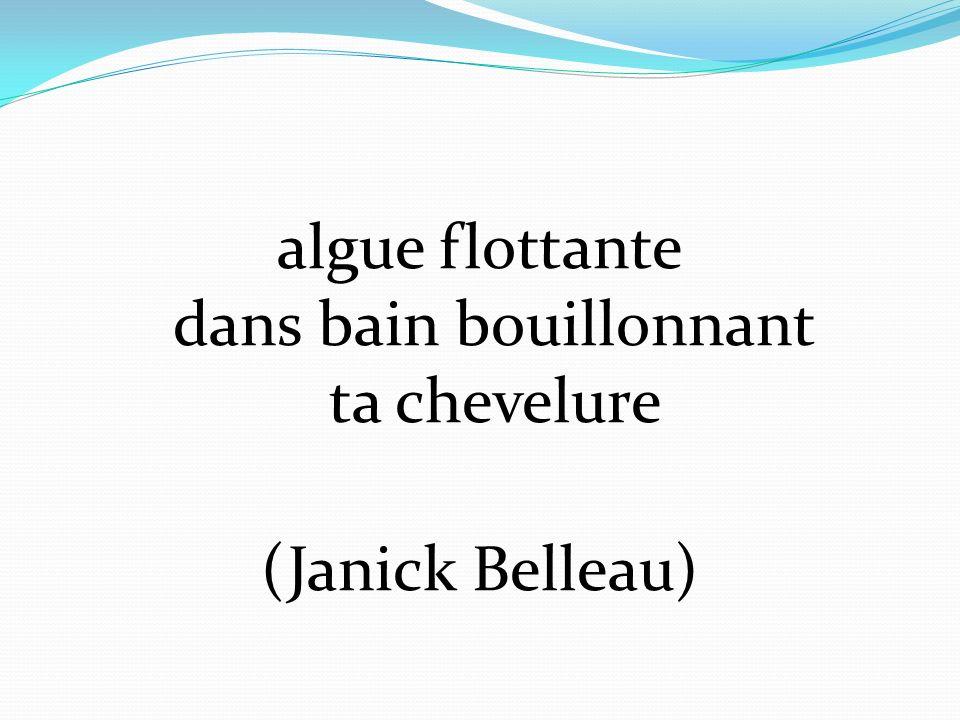 algue flottante dans bain bouillonnant ta chevelure (Janick Belleau)