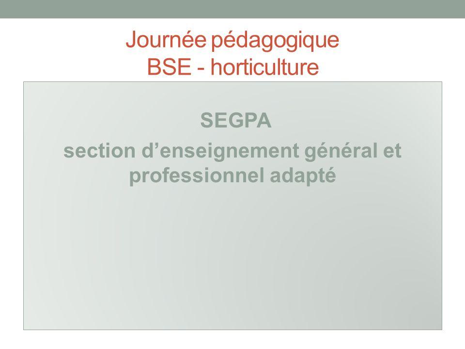 Journée pédagogique BSE - horticulture SEGPA section denseignement général et professionnel adapté
