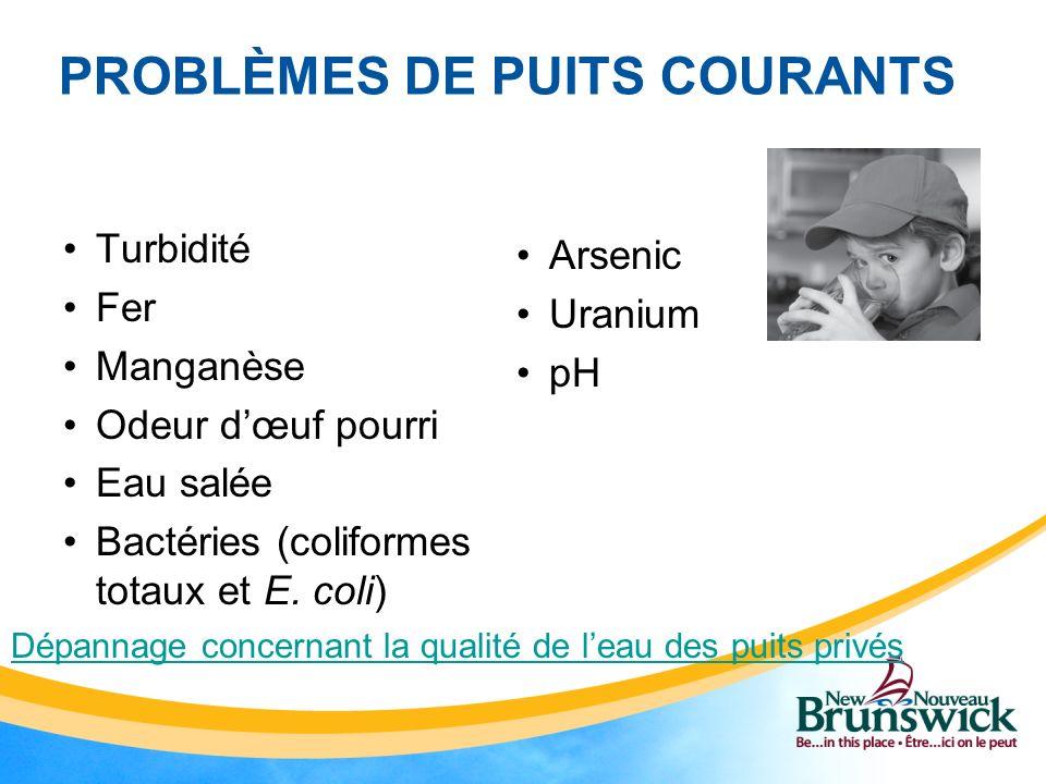 PROBLÈMES DE PUITS COURANTS Turbidité Fer Manganèse Odeur dœuf pourri Eau salée Bactéries (coliformes totaux et E. coli) Arsenic Uranium pH Dépannage