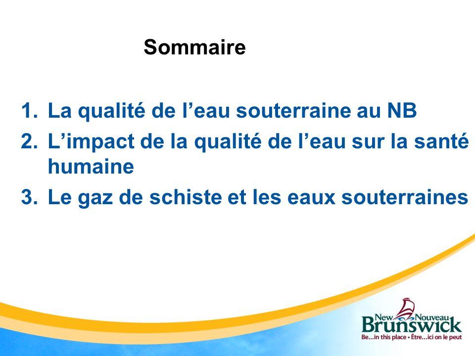 1.La qualité de leau souterraine au NB 2.Limpact de la qualité de leau sur la santé humaine 3.Le gaz de schiste et les eaux souterraines Sommaire